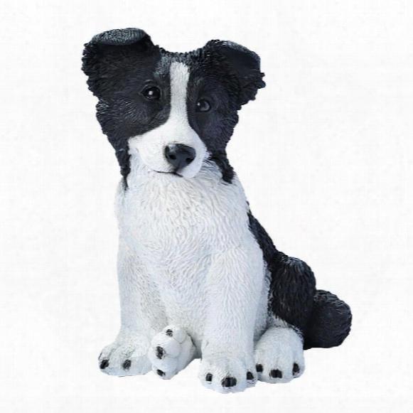 Border Collie Puppy Dog Statue