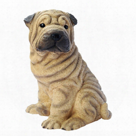 Shar-pei Puppy Dog Statue