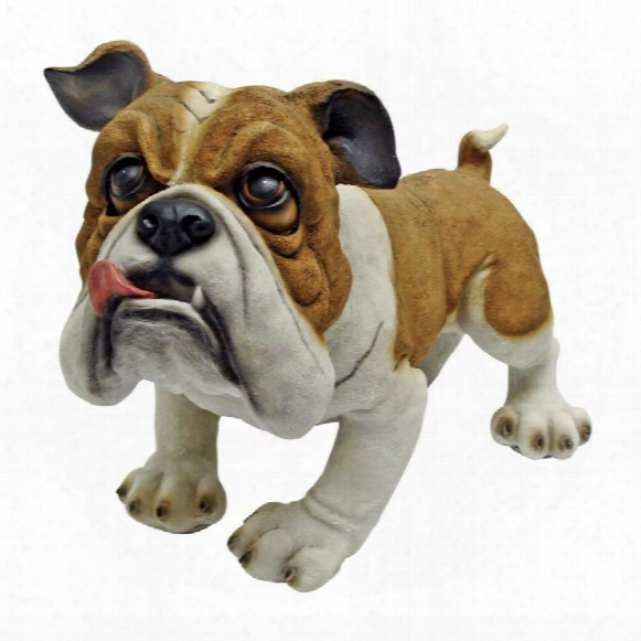 Winston The British Bulldog Statue