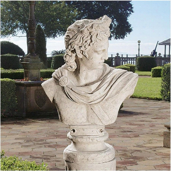 Apollo Belvedere Sculptural Bust