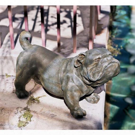 Brutus, The English Bulldog Sculpture