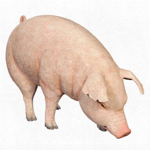 Divine Swine Life-size Farm Pig Statue