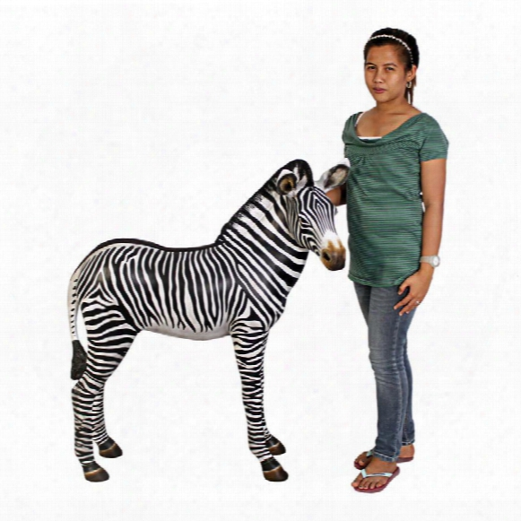 Grand-scale African Zebra Foal Statue