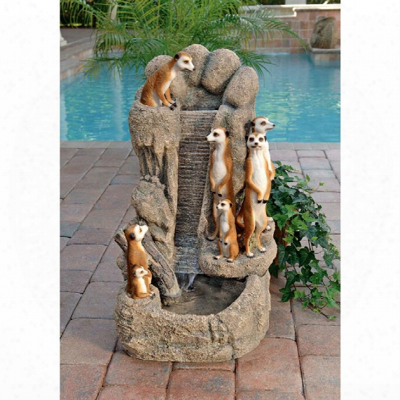Meerkat Family At The Watering Hole Garden Fountain