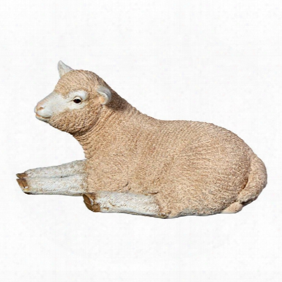 Merino Ewe Life-size Lamb Statue: Resting