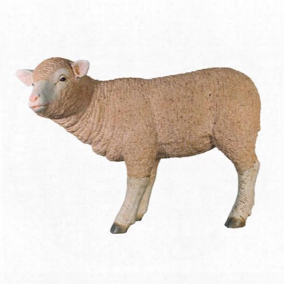 Merino Ewe Life-size Lamb Statue: Standing