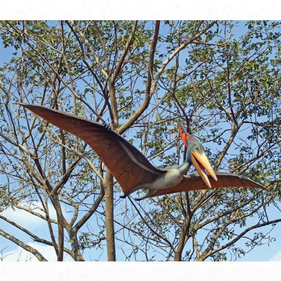 Prehistoric Pteranodon Dinosaur Statue