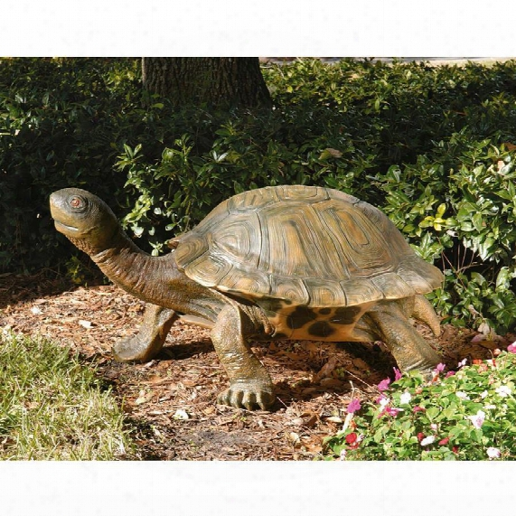The Tranquil Tortoise Garden Sculture: Giant