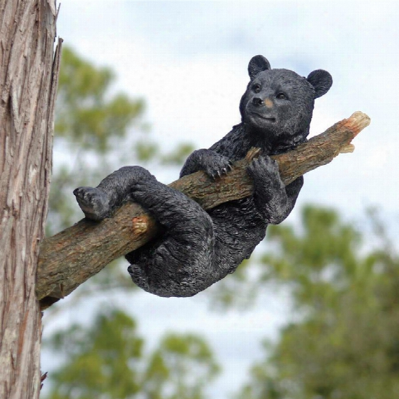 Up A Tree Hanging Black Bear Cub Sculpture: Hanging Bear Cub
