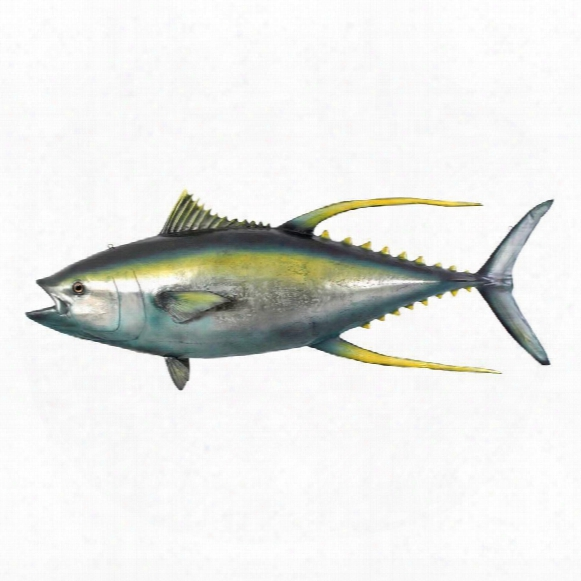 "Yellowtail Tuna"" Ceiling Mount Memorial Of Conquest Sculpture"