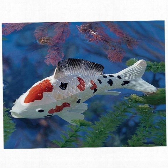 Japanese Floating Koi Sculpture: Medium