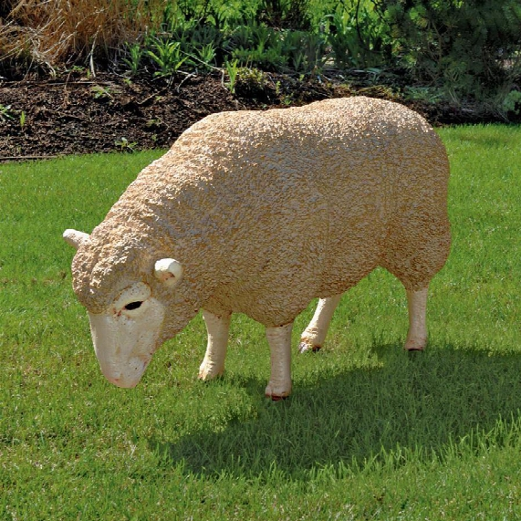 Merino Ewe Life-size Sheep Statue: Head Down