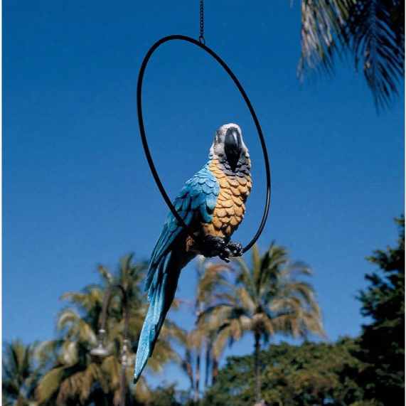 Polly In Paradise Parrot Sculpture On Ring Perch: Large