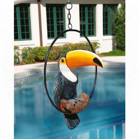 Touco The Tropical Toucan Sculpture O Ring Perch