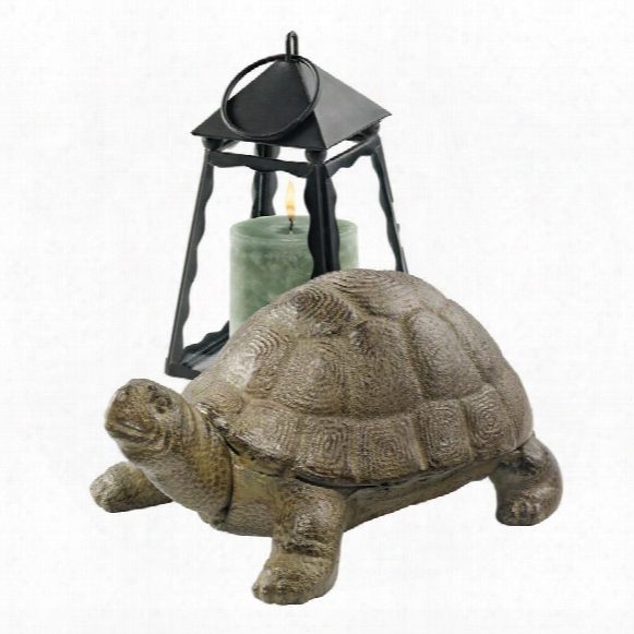 Aesop's Turtle Cast Iron Statue