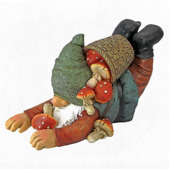 Clumsy Karl The Mushroom Hunter Gnome Statue