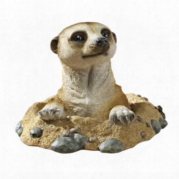 Kalahari Meerkat Statue: Out Of Hole