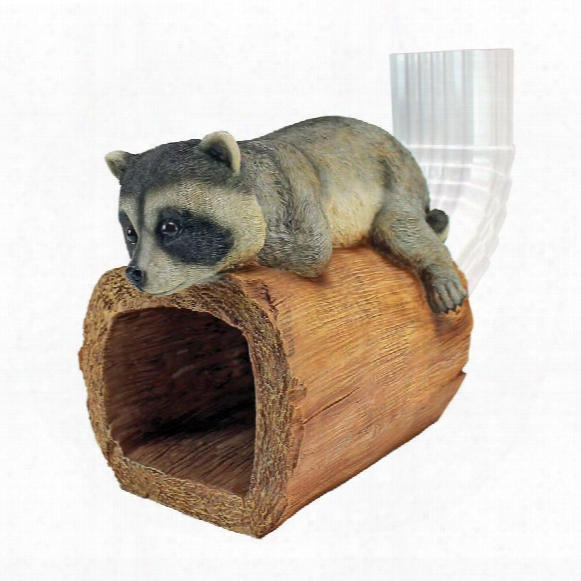 Raider The Raccoon Gutter Guardian Downspout Statue