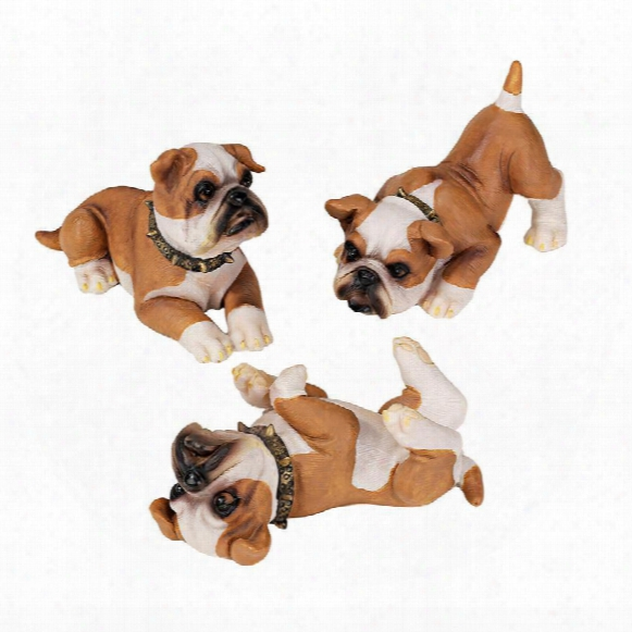Stop, Drop And Roll British Bulldog Puppy Statues: Set Of Three