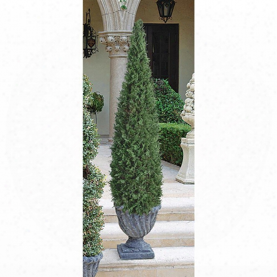 The Topiary Tree Collection: Large Cone