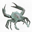 Medium Bronze Crab Sculpture