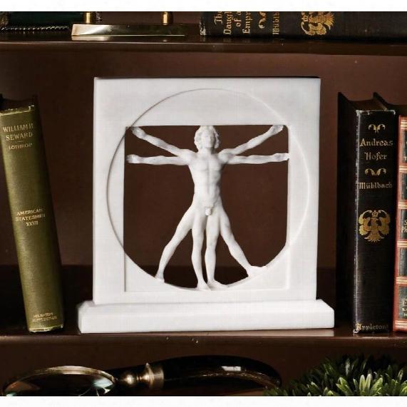 Vitruvian Man Bonded Marble Statue