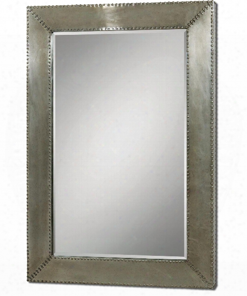 "Rashane 65"" Wall Mirror In Silver-champagne Aluminum"