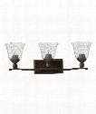 "Bolla 26"" 3 Light Bath Vanity Light in Olde Bronze"