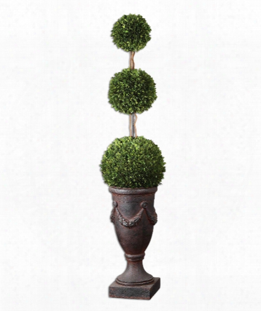 "Preserved Boxwood 14"" Other Home Accent In Aged Black-rust Brown Wash-natural Evergreen"
