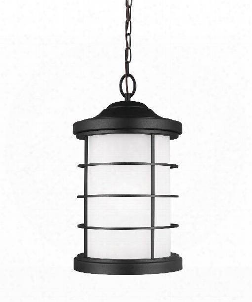 """Sauganash 10"""" 1 Light Outdoor Hanging Lantern In Black"""