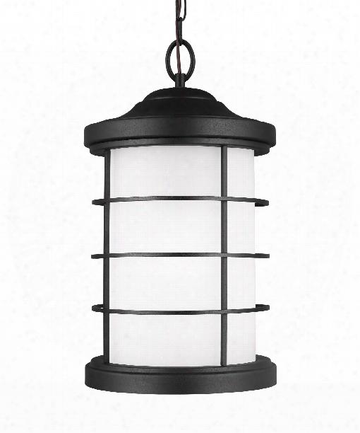 Sauganash Led 1 Light Outdoor Hanging Lantern In Black