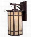 "Delancy 18"" 1 Light Outdoor Outdoor Wall Light in Iron Oxide"