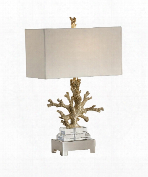 Coral Colony 1 Light Table Lamp In Brushed Brass