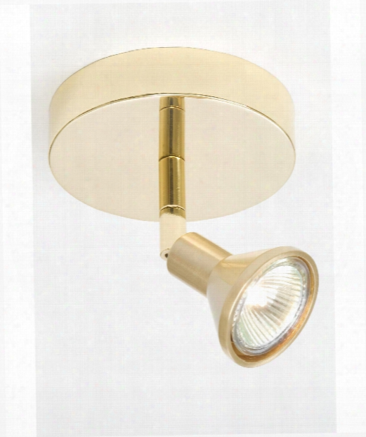 Lichtstar 1 Light Mini Pendant In Polished Brass