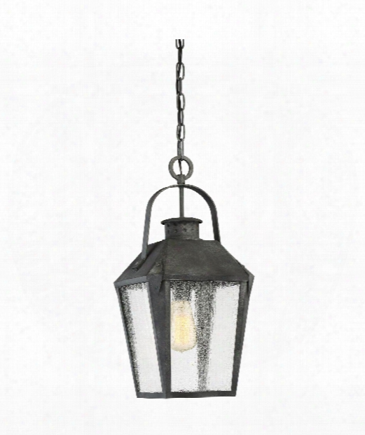"""Carriage 10"""" 1 Light Outdoor Outdoor Hanging  Lantern In Mottled Black"""