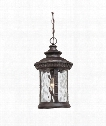 "Chimera 11"" 1 Light Outdoor Outdoor Hanging Lantern in Imperial Bronze"