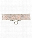 "Parchment Park 24"" 4 Light Bath Vanity Light in Burnished Silver"