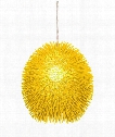 "Urchin 16"" 1 Light Large Pendant in Un-Mellow Yellow"