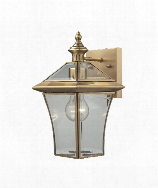 "Riverdale 7"" 1 Light Outdoor Wall Light In Brushed Brass"