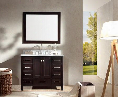 "Arielesp Cambridge 43"" Single Sink Vanity Set With Marble Top Two Doors Nine Drawers And Mirror In"