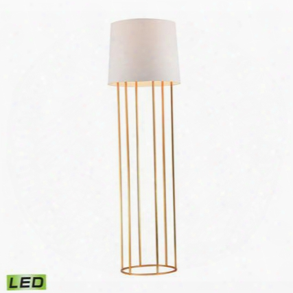 D2591-led Barrel Frame Led Floor Lamp In Gold Leaf