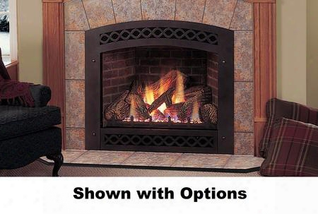 "Lexington Lx36dvpsb 36"" Liquid Propane Convertible Direct Vent Fireplace With Flush Face Design Lexfire Burner Ceramic Glass Logs Safety Barrier And"