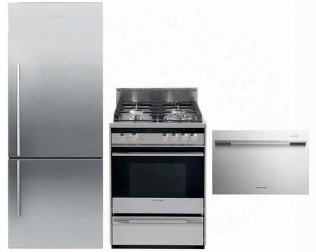 "3-piece Stainless Steel Kitchen Package With Rf135bdrx4 25"" Right Hinge Counter Depth Bottom Freezer Refrigerator Or24sdmbgx2 24"" Freestanding Gas Range And"
