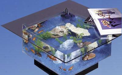 "675 24"" Wide Aqua Coffee Table Aquarium 25"