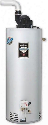 Rg2pv50t6n Residential Power Vent Gas Water Heater With 50 Gallon Capacity And 40000