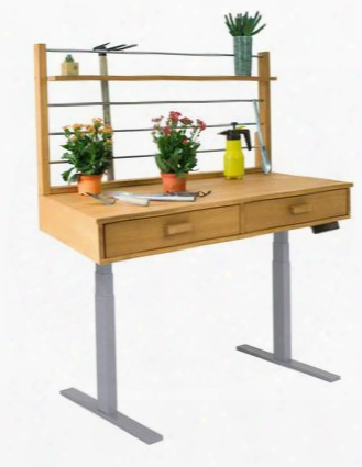 """V1710 55"""" - 82"""" Sit To Stand Potting Bench With 2 Drawers 1 Top Shelf Adjustable Height Grey Powder Coating Steel Frame And Acacia Hardwood Top In"""