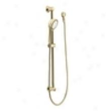Moen 3867p Handheld Shower, Polished Brass