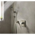 Price Pfister 016-2dfk Handshower Wall Mount, Brushed Nkckel