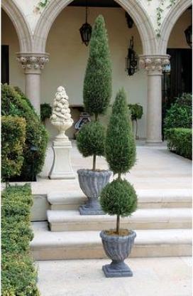 Classic Topiary Tree Collection: Abundant