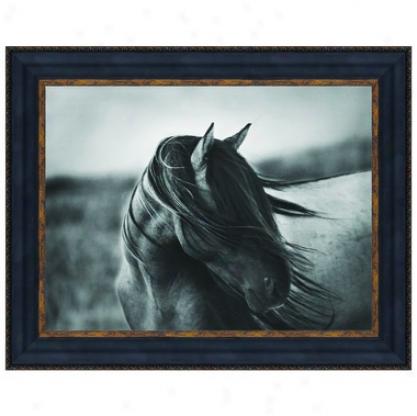 """""""fierce Graace"""" Wild tSallion Horse Print Under Glass By Tony Stromberg"""